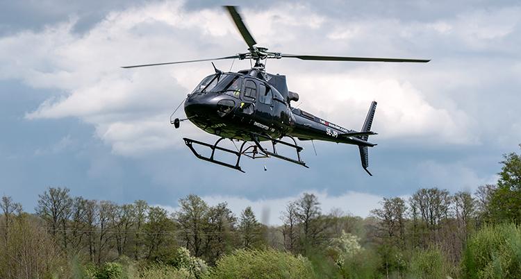 En helikopter flyger ovanför en skog. Träd ses nertill i bilden och himmel bakom helikoptern.
