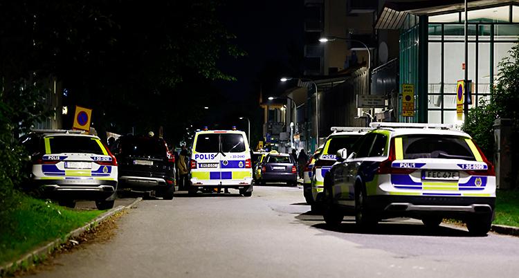 Det är natt. Flera polisbilar står på en gata.