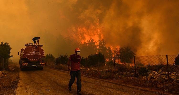 En brandman och en bil står på en liten väg. De är nästan skymda av rök. Bakom dem brinner det kraftigt.