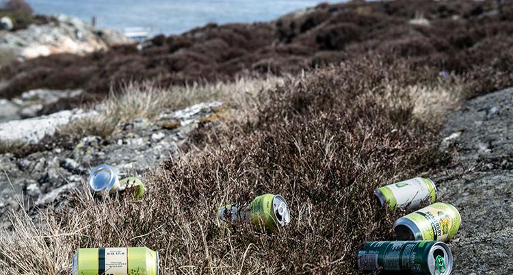 burkar av aluminium ligger slängda i naturen