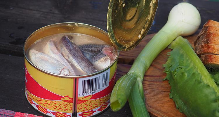 surströmming1