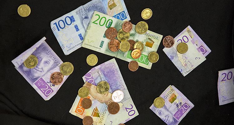 En bild som visar pengar. Det är sedlar och mynt.