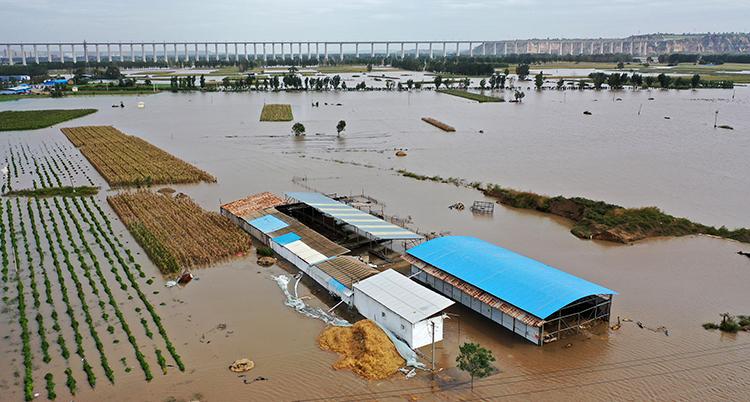 en översvämmad enorm åker och låga husbyggnader som står i vattnet.